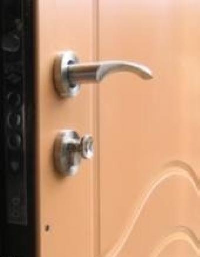 входная железная дверь с внутренней зеркало в квартиру г троицк
